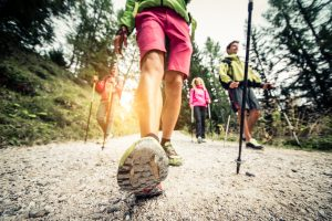Nordic Walking – Route durch den Branitzer Park