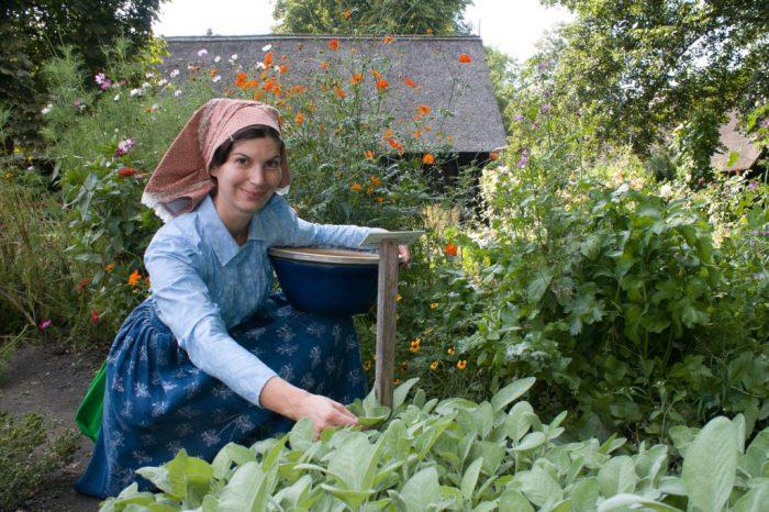 Garten im Freilandmuseum Lehde | Foto:  Landkreis Oberspreewald-Lausitz