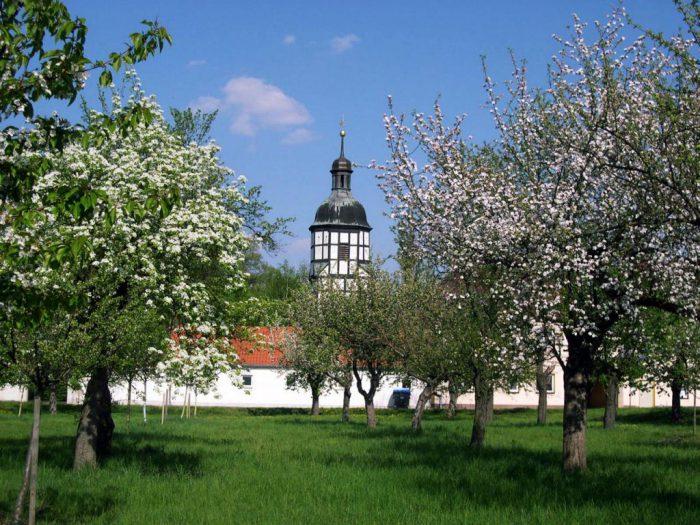 Kirche Saathain | Foto:  Elbe-Elster-Land