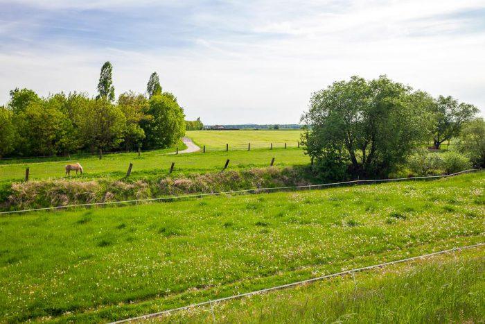 Mühlberg | Foto:  Elbe-Elster-Land