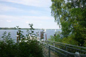 Lausitzer Seenland 100