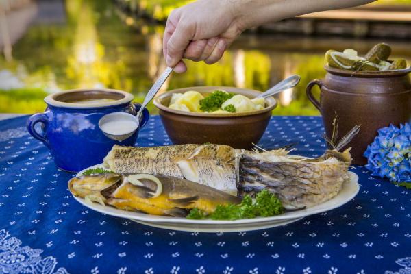 Fisch-Menüs